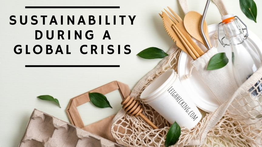 Sustainability During a Global Crisis