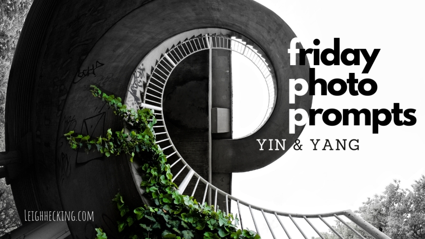 Photo Prompt Friday: Yin & Yang